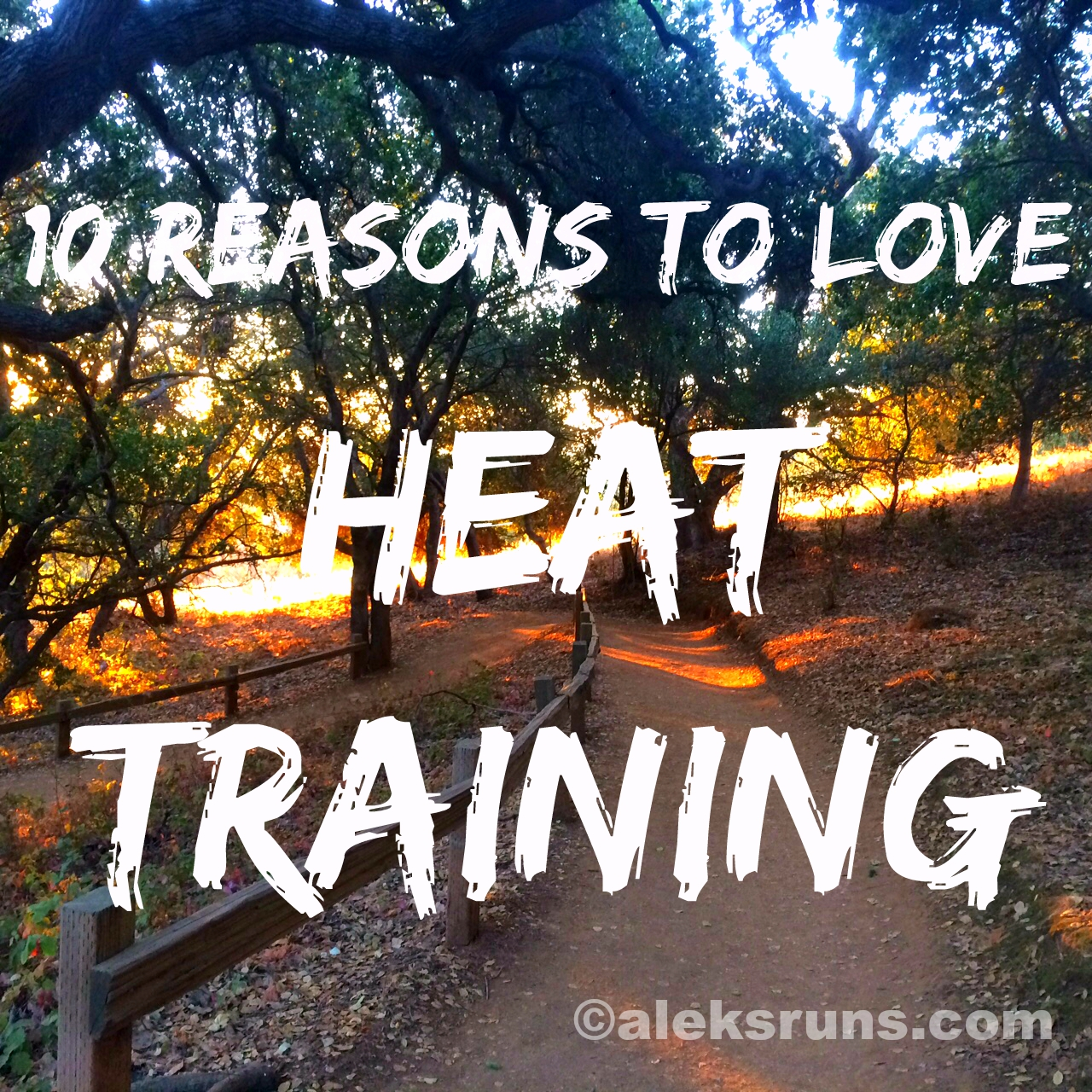 heat training